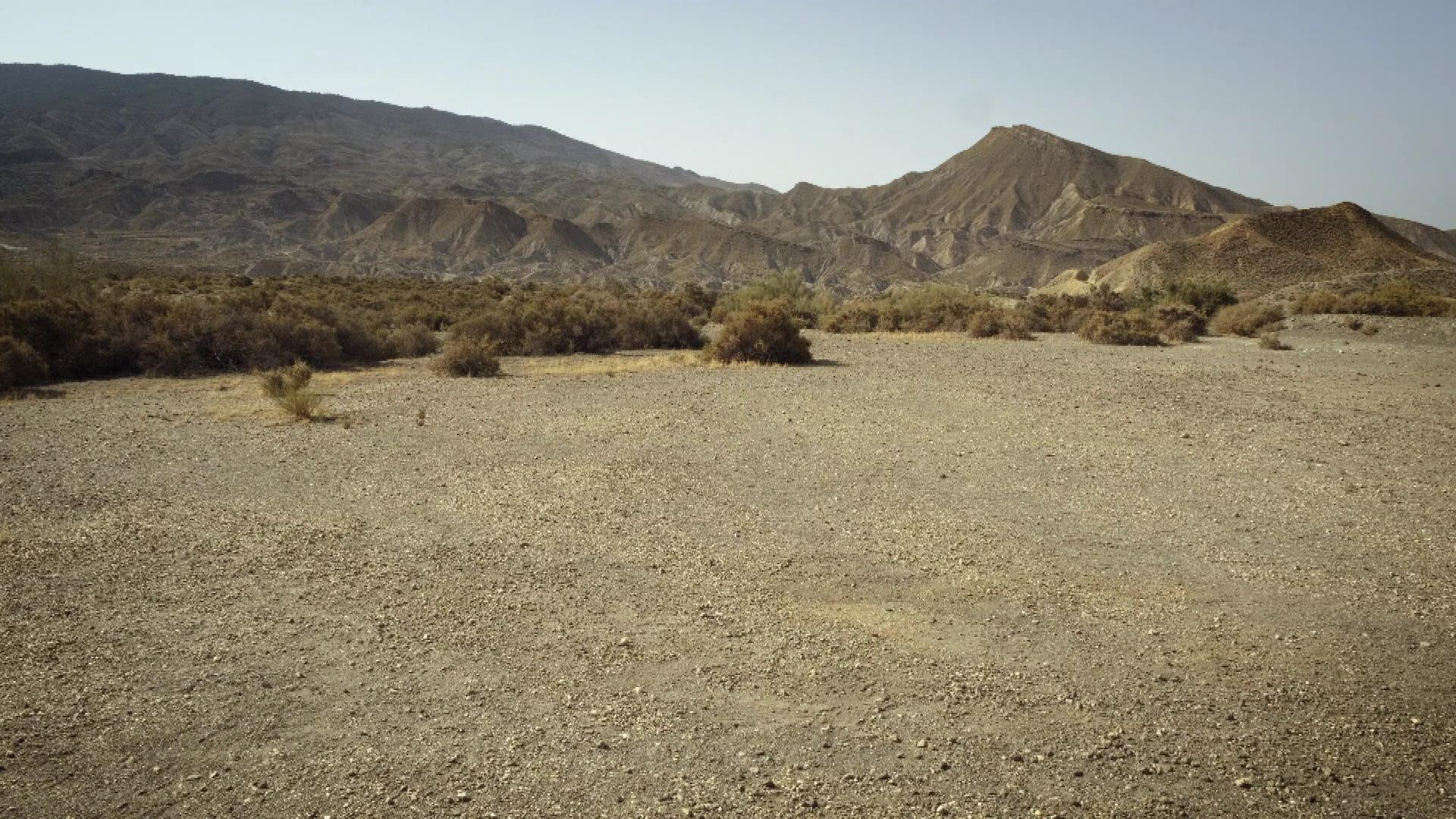 Short Films Mute: Dust Devil